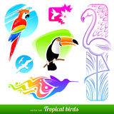 Set of tropical birds Royalty Free Stock Image
