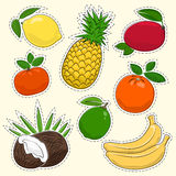 Set of Tropical and Citrus Fruit Stickers Stock Images