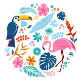 Set of tropical elements. Pink flamingos, Toucan, Flowers and Exotic tropical leaves. Cute characters for summer design elements. Vector illustration esp10 Stock Photography