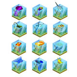 Set of 12 tropical fish frozen in the ice Royalty Free Stock Photos