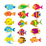 Set of tropical fishes Stock Images