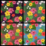 Set of tropical floral seamless patterns Royalty Free Stock Photography