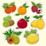 Set of Tropical Fruit Stickers Royalty Free Stock Image