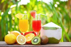 Set of tropical fruits colorful and fresh summer juice glass healthy foods. / Many ripe fruit mixed on nature green background royalty free stock photo