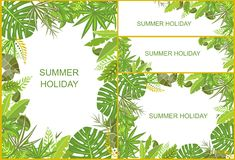 Set of tropical green backgrounds Royalty Free Stock Photos