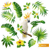 Set with tropical leaves, flowers and birds Stock Photos
