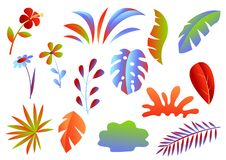 Set of tropical leaves and flowers. royalty free stock photography
