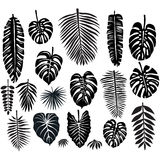 Set of Tropical Leaves. Set of silhouette Tropical Leaves Stock Photography