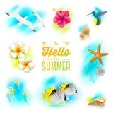 Set of tropical nature elements. Set of summer vacation and tropical nature elements Stock Photo