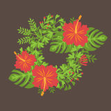 Set of tropical palm leaves and flowers hibiscus flower hawaii, exotic summer flower background Royalty Free Stock Photography