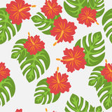 Set of tropical palm leaves and flowers hibiscus flower hawaii, exotic summer flower background Royalty Free Stock Photo