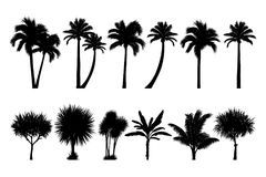 set of tropical palm and tree silhouettes Stock Photography
