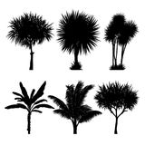 set of tropical palm and tree silhouettes Royalty Free Stock Image