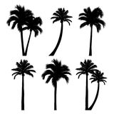 set of tropical palm tree silhouettes Royalty Free Stock Photos