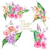 Set of tropical vintage floral vector bouquet Stock Image