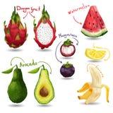 Set tropische Früchte Abbildung in der japanischen Art Getrennt Lizenzfreie Stockfotos