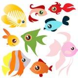 set tropiskt för fisk Fotografering för Bildbyråer