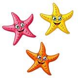 Set trzy barwiącej rozgwiazdy Fotografia Stock