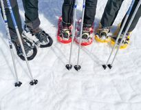 set trzy pary karple, kanty śnieg lub dwa narciarskiego słupa grupa sportów ludzie na śniegu gotowym chodzić na zdjęcie royalty free