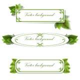 Set trzy sztandaru z zielonymi liśćmi Fotografia Stock