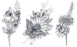 Set trzy wektorowego kwiecistego bukieta z ziele, wildflowers i insektami czarny i biały ręka rysującymi, ilustracji