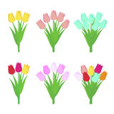 Set of tulip flowers bouquets isolated on white background. Stock Images