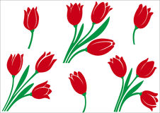 Set of tulips Stock Image