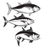 Set of tuna fish icons isolated on white background. Design elem Stock Images