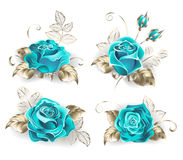 Set of turquoise roses. With leaves of white gold on a white background. Blue tiffany. Fashionable color. Turquoise rose Royalty Free Stock Photo