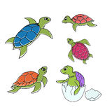 Set of turtles in cartoon style. Vector illustration - set of turtles in cartoon style isolated on white background Stock Photos