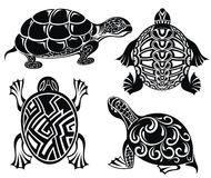 Set of turtles. Set of decorative flowers in different shapes Stock Image