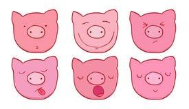Set twarze świnie Fotografia Stock