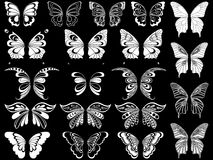 Set of twenty white butterflies over black Royalty Free Stock Photography