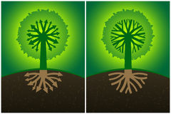 Set two abstract tree diagram with the branches of the roots in the form of arrows and crown, Stock Photography