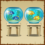 Set of two aquariums with fish on wooden stools Stock Photography