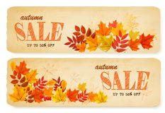 Set of two autumn sale banners with colorful leaves. And berries. Vector Stock Images