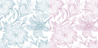 Set of two beautiful pattern with  lilies. Set of two beautiful pattern with blooming lilies Royalty Free Stock Photo