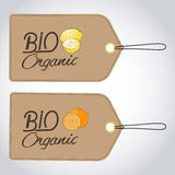 Set of two bio organic labels. On one image of a lemon, on another orange Royalty Free Stock Photography