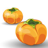 Set of Two Glossy Orange Permisson Stock Images