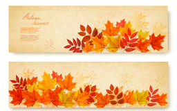 Set of two nature banners with colorful autumn leaves. Vector Stock Photo