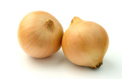 Set of two onion bulbs Stock Photography