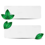 Set of two sheets of paper with green leaves Stock Photos