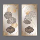 Set of two vintage labels with white and black truffles. Set of two vintage labels with white and black truffles placed on old paper background. Great for Royalty Free Stock Images