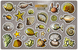Set of underwater life cartoon stickers. Vector doodle objects and symbols collection. Label design elements. Cute patches, pins, badges series. Comic style Stock Photos