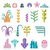 Set underwater plants. Set of bright colored water underwater tropical plants. Coral reef under the sea. Flat vector cartoon illustration. Objects  on a white Stock Image