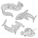 Set with underwater predators in zentangle style. Set with underwater predators with high details. Collection for anti stress coloring book with shark Stock Image