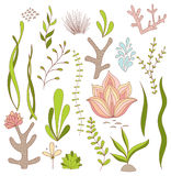 Set of Underwater Whimsical Plants - Seaweed, Coral, Flowers. Isolated on White. Vector Illustrations Stock Photography