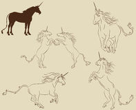Set of unicorns. In different active poses Stock Images