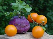 Set unterschiedliches Gemüse Stockbild