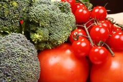 Set unterschiedliches Gemüse Stockfotografie